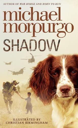 9780007339594: Shadow