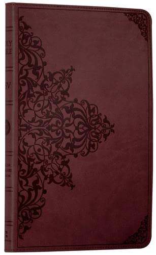 9780007360659: Holy Bible: English Standard Version (ESV) Anglicised Chestnut Ornamental Thinline edition (Bible Esv)