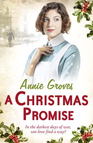 9780007361557: A Christmas Promise