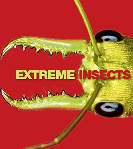 Extreme Insects: Richard Jones