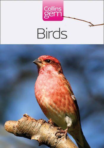 9780007441983: Collins Gem – Birds