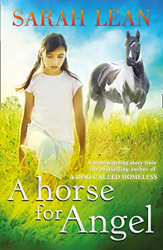 9780007455058: A Horse for Angel
