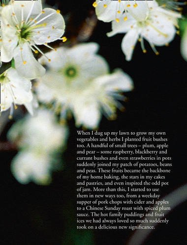 Tender (Paperback): Nigel Slater