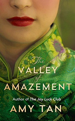 9780007456277: The Valley of Amazement
