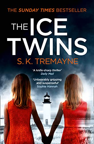 9780007459223: The Ice Twins