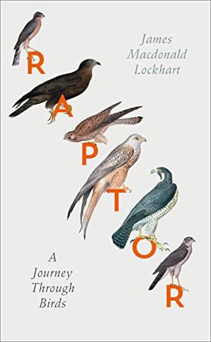 9780007459872: Raptor: A Journey Through Birds