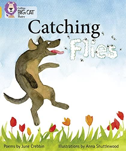 9780007461813: Collins Big Cat - Catching Flies: Band 09/Gold