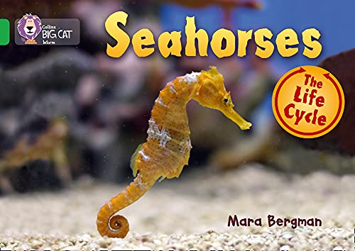 Seahorses (Collins Big Cat): Bergman, Mara