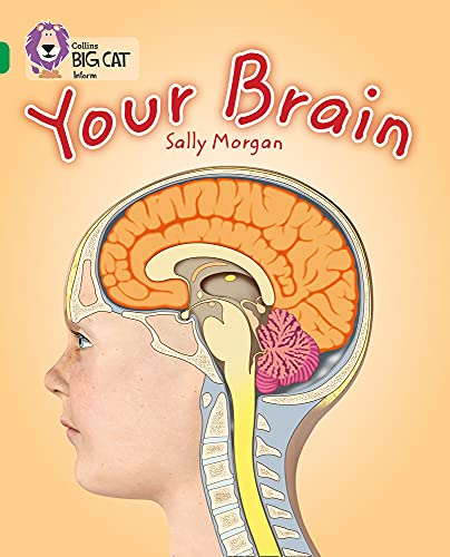 9780007465453: Your Brain (Collins Big Cat)