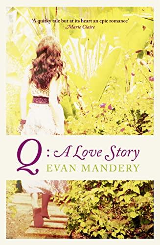 EVAN MANDERY Q EBOOK