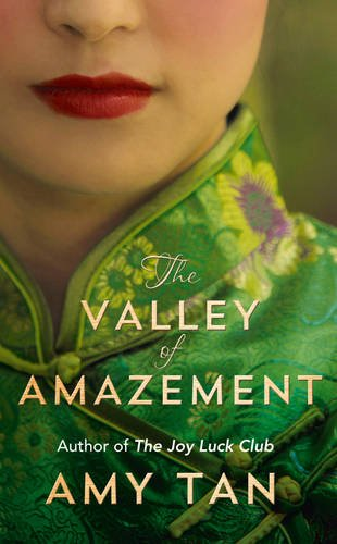 9780007468874: The Valley of Amazement