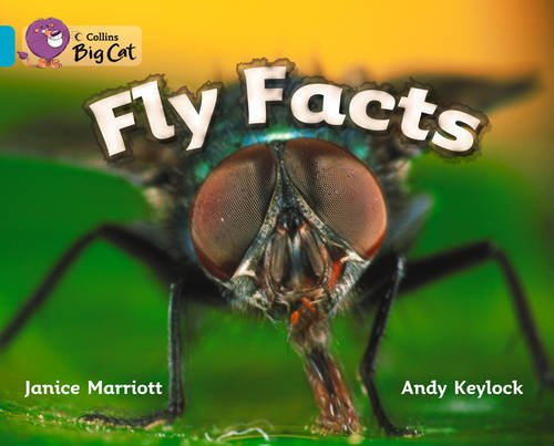 9780007470143: Collins Big Cat - Fly Facts Workbook