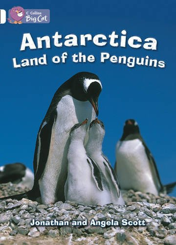 9780007471027: Collins Big Cat - Antarctica: Land of the Penguins: Band 10/White