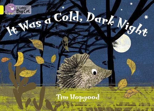 9780007471690: Collins Big Cat - It Was A Cold Dark Night Workbook
