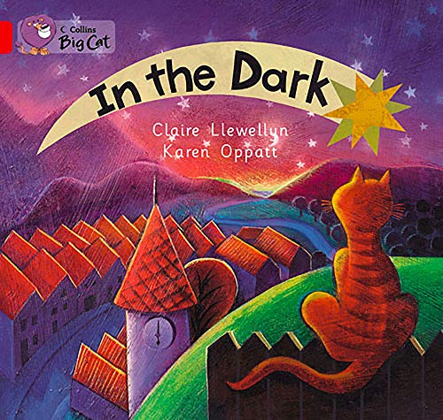 9780007471812: In the Dark (Collins Big Cat)
