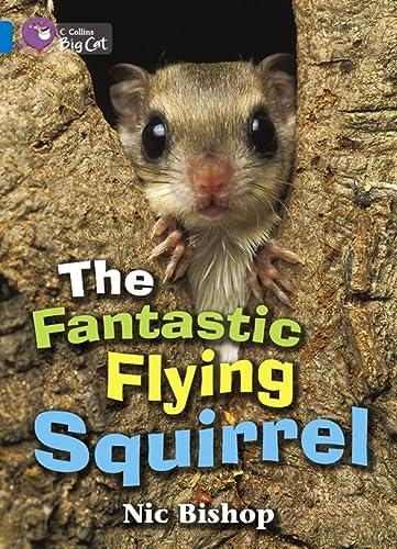 9780007472284: The Fantastic Flying Squirrel (Collins Big Cat)
