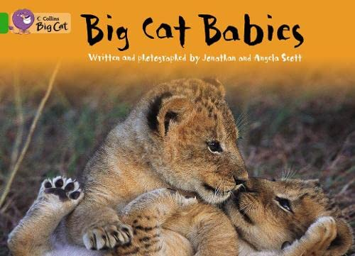 9780007472383: Collins Big Cat - Big Cat Babies: Band 05/Green