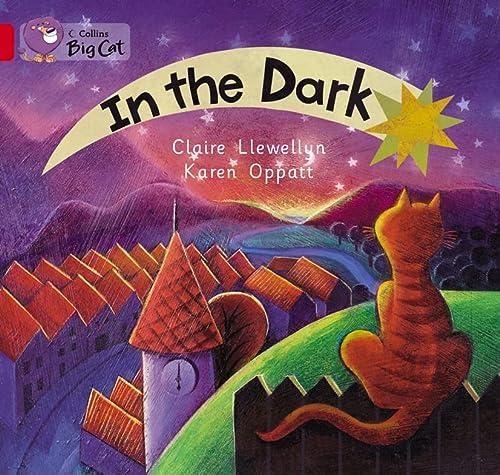 9780007474387: In the Dark Workbook (Collins Big Cat)