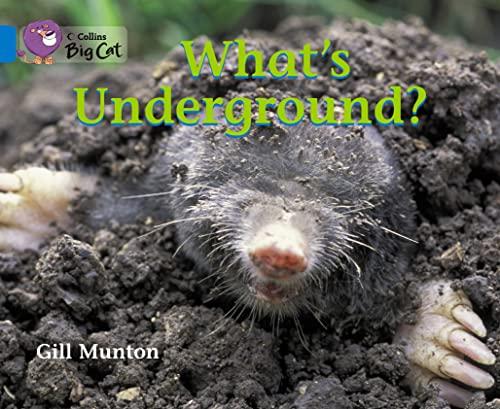 9780007475926: What's Underground? (Collins Big Cat)