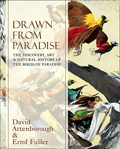 9780007487615: Drawn From Paradise: The Discovery, Art and Natural History of the Birds of Paradise
