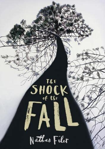 9780007491759: The Shock of the Fall