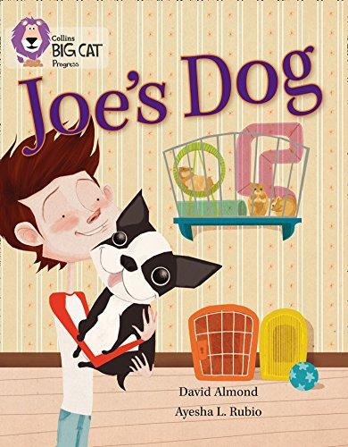 9780007498581: Joe's Dog (Collins Big Cat Progress)