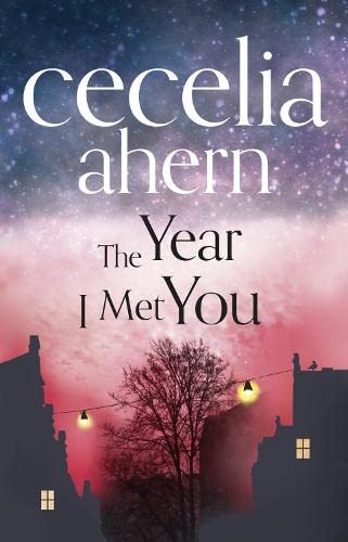 9780007501762: The Year I Met You