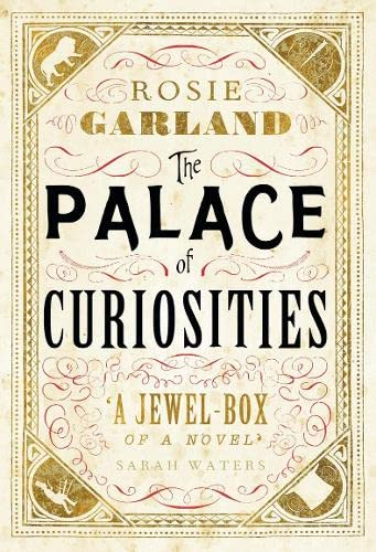 9780007503841: The Palace of Curiosities