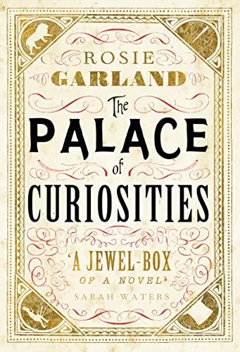 9780007503841: The Palace of Curiosities