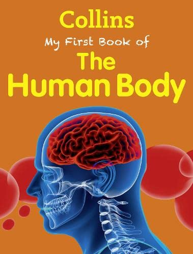 9780007521159: My First Book of the Human Body (My First)