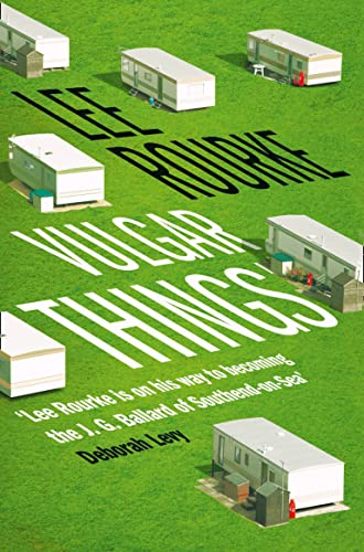 9780007542536: Vulgar Things