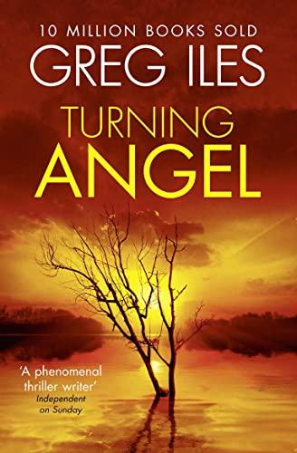 9780007546541: Turning Angel