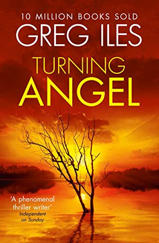 9780007546541: Turning Angel
