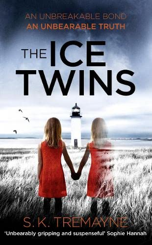 9780007563036: The Ice Twins