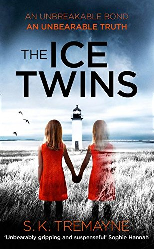 9780007563043: The Ice Twins