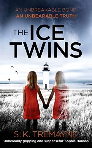 9780007563043: The Ice Twins