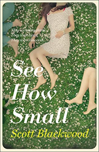 9780007580965: See How Small