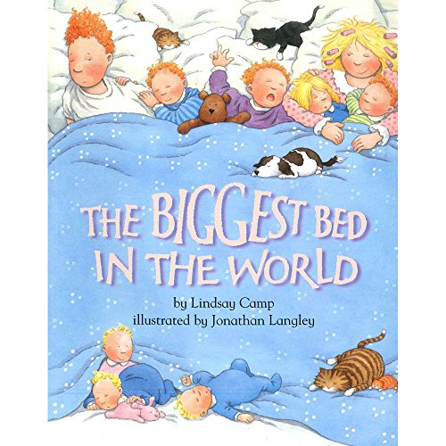 9780007711192: The Biggest Bed in the World