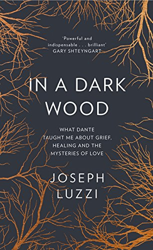 9780008100636: In a Dark Wood: What Dante Taught Me About Grief, Healing, and the Mysteries of Love