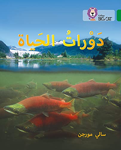 9780008131548: Life Cycles: Level 15 (Collins Arabic Big Cat) (Arabic and English Edition)