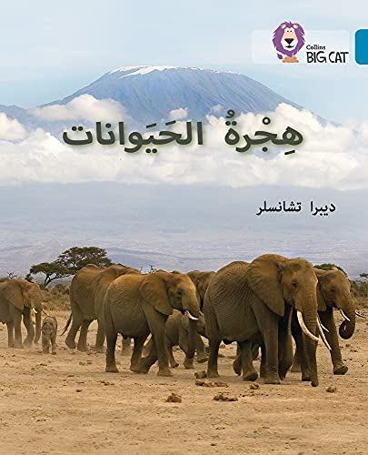 9780008131593: Animal Migration: Level 13 (Collins Arabic Big Cat) (Arabic and English Edition)