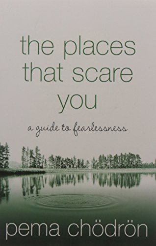 9780008132248: The Places That Scare You