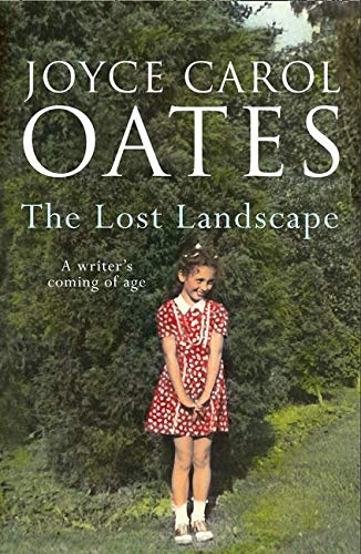 9780008146597: The Lost Landscape