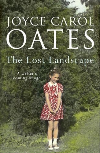 9780008153960: The Lost Landscape