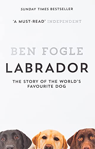 9780008168810: Labrador: The Story of the World's Favourite Dog