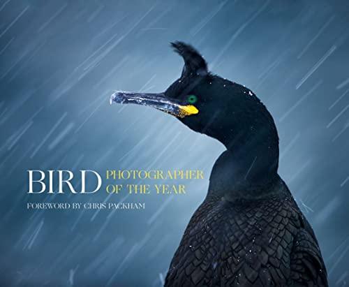 9780008175238: Bird Photographer of the Year