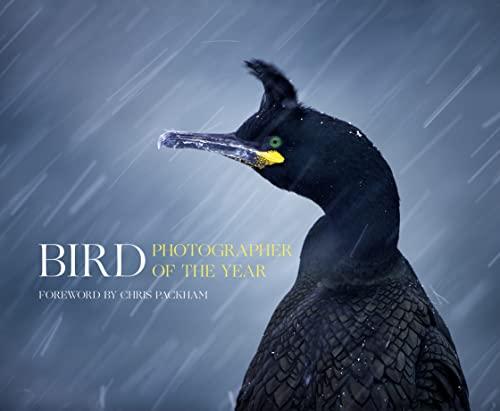 Bird Photographer of the Year: Bird Photographer of the Year