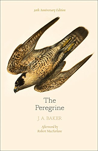 9780008216214: The Peregrine: 50th Anniversary Edition