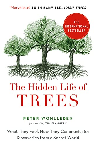 9780008218430: The Hidden Life of Trees: The International Bestseller – What They Feel, How They Communicate