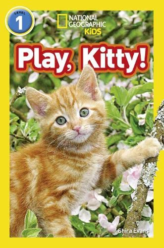 9780008266516: Play, Kitty! (National Geographic Readers)